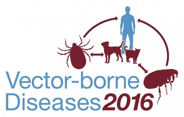 What is a vector disease