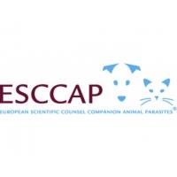 ESCCAP Forum in Lisbon