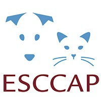 New ESCCAP Poland flyer