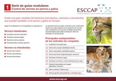 a tünetekben giardia macskák