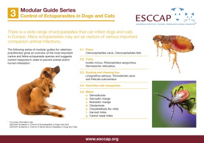 MG3: Control of Ectoparasites in Dogs and Cats