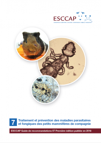 Guideline 7 now available in French