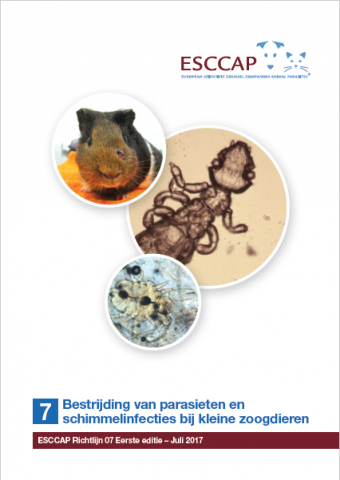 Guideline 7 now available in Dutch